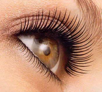 Eyebrow Growth روغن گیاهی رشد و تقویت مژه و ابرو تقدیس