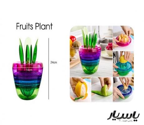 خرید پستی  گلدان جادویی fruit plant
