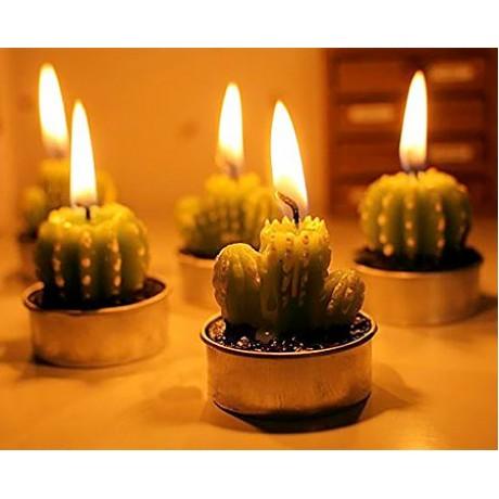 خرید پستی  شمع های فانتزی طرح کاکتوس 6تایی
